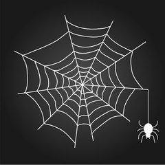 A web with a spider. White web on a black background.