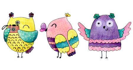 Watercolor funny illustration with owls. Hand drawn bird drawing.