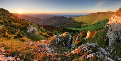 Wall Mural - Beautiful autumn morning above green forest valley in national park Fatra, Slovakia landscape