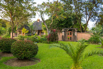 Vorgarten mit Palmen