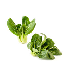 Two bunches Fresh green salad Pak-choi (Chinese cabbage) on a clean white background. Isolated.