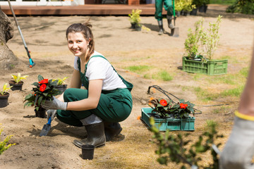 Making first steps to arrange a stunning garden