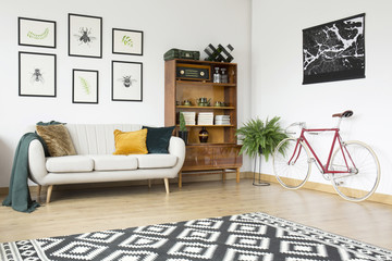 Vintage living room with bicycle