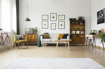 Vintage furniture in living room