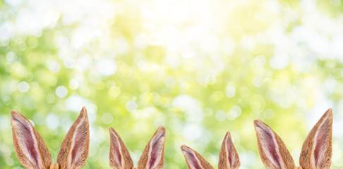 Osterkarte Flyer Hintergrund