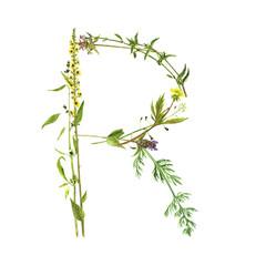 floral watercolor letter R