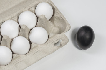 One black chicken egg next to white eggs in a cardboard box