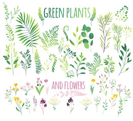 Big set of green leaves, twigs and flowers, flat doodle vector illustration isolated on white background. Cute set, collection of green leaves, herbs, flowers and branches, eco decoration elements