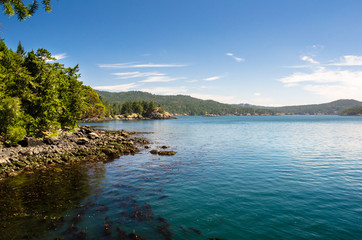 Forested Coastline on a Sunny Summer Morning. East Sooke Park, Vancouver Island, BC, Canada.