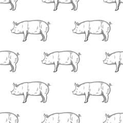 Pig vintage engraved illustration Seamless Pattern background. Vector