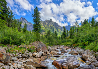 Mountain stream in primeval forest in Siberia