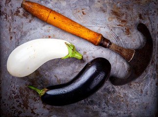 Eggplants are different. Vegetables. Variety of shapes and colors on a metallic background.Food or Healthy diet concept.Vegetarian.Yin and Yang symbol .Top View.Copy space for Text.selective focus.