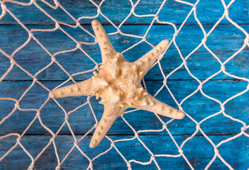 Starfish in fishing net on old deep blue wooden background