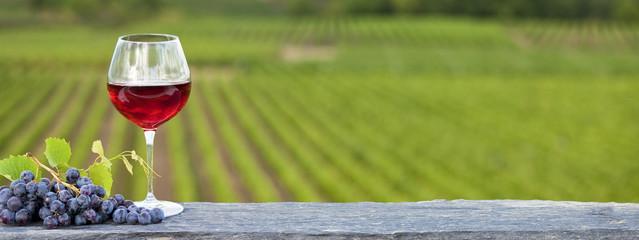 Vin rouge devant les vignes