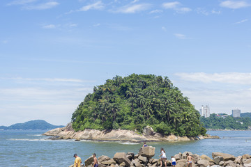 ilha com árvores