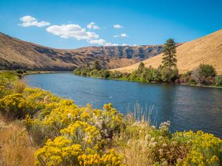 Foto op Plexiglas Cappuccino Amazing landscape - big blue river among hills. Yakima Canyon road, Washington