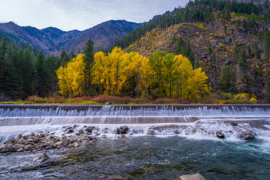 Autumn forest on the riverside, beautiful waterfall on a background of mountains. Wenatchee River near Leavenworth, Late October, USA