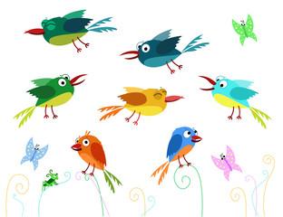 Vector collection of cute funny birds