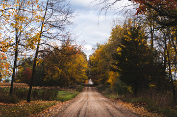Dirt road amidst trees during autumn at park