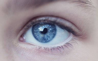 Close-up of person's blue eye