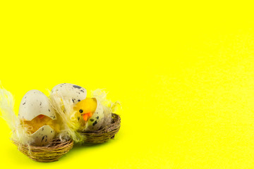 Easter holiday concept with 2 easter chicks on a yellow background with copy space