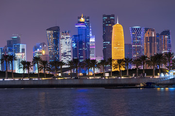 Doha Qatar epic skyline and palm trees