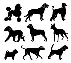 set of dog silhouettes. vector illustration