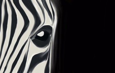 Figure of a zebra on a black background