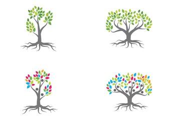 family tree logo vector