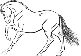 A sketch of a stamping horse.