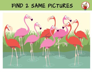 Find two the identical flamingos in the flock. Find two same pictures. Educational matching game for children. Cartoon vector illustration