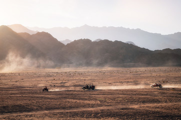 Buggy and ATV quads races in Sinai desert at sunset, Egypt.