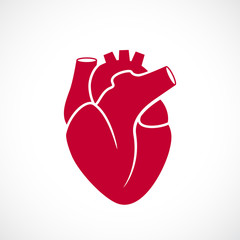 Human heart medical icon
