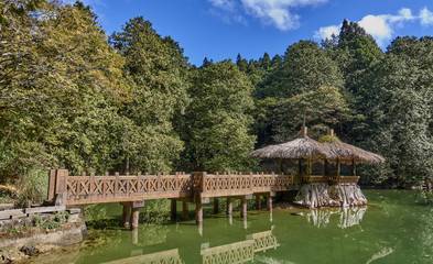 Nature in Alishan Park is what attracts tourists (Taiwan)