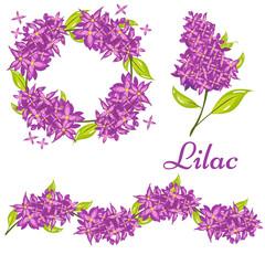 Cartoon Lilac Spring Flower Illustration Set