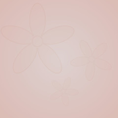 Transparent flower on a pastel background of pink color.