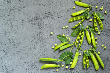 Green peas on branches in pods
