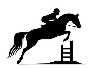 Jumping horse on a white background