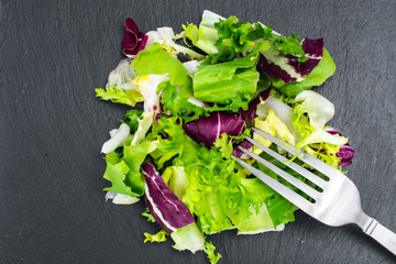 Concept of healthy meal. Fresh leaves of different salads on black