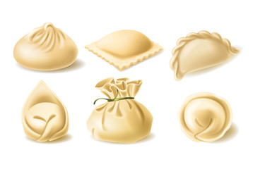 Set of different dumplings, pelmeni, wonton, tortellini, khinkali, manti, ravioli, vector realistic illustration. Traditional asian and european cuisine, dough stuffed with meat or vegetables