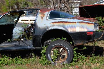 Vintage Classic Pontiac Trans Am in Junkyard
