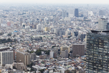 Tokyo city from the top