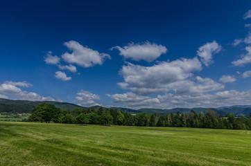 gruene natur und himmel