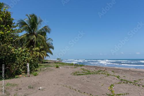 Black Sand Beach National Park Of Tortuguero In Costa Rica Stock