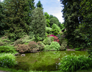 park in spring with a beautiful pond surrounded by trees and flowering plants