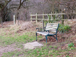 outside empty park bench autumn countryside lonely