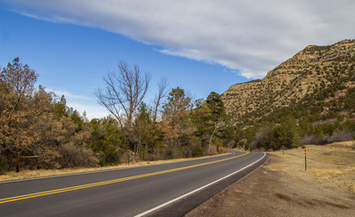 A highway disappearing around a curve between a rocky mountain dotted with shrubs and a stand of shrubs in a spring time american landscape