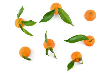 Top view of mandarins or oranges with leaves for layout isolated on white