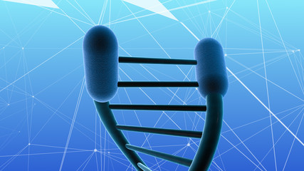 Telomeres and cellular aging of DNA and cells