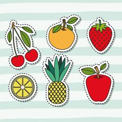 fruits set collection on decorative lines color background vector illustration